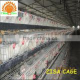 china zisa factory mainly produce Poultry chicken layer cage farm equipments cheap price