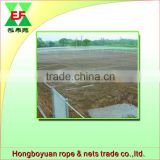 China factory direct sale of hdpe agricultural bird netting with UV protection