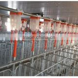 Automatic Feeding Line delivery feed system for Pig Farm Feeding system