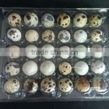 Quail eggs boxes quail eggs packing boxes containers /cartons 6 eggs ,12 eggs ,18 eggs ,30 eggs