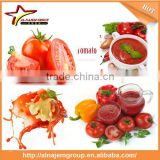 Best quality tomato paste sachet packing machine tomato puree making machine tomato sauce making machine