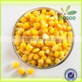 Wholesale cheap price canned sweet corn, 425 g
