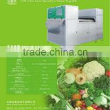 Frozen Vegetables Color Sorters Angelon Belt-type Color Sorting Equipments for Sorting Frozen Vegetables