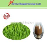 organic wheatgrass juicer powder