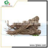 high quality cheap medicinal material angelica root extract