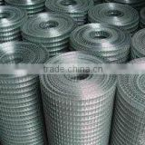 "1/2""x1/2""square hot galvanized welded wire mesh /welded wire mesh fencing (factory)"