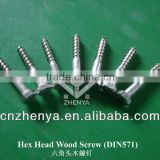 DIN571 coach screws
