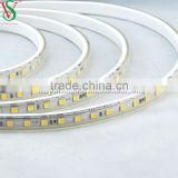 230V Factory price flexible Outdoor christmas LED Strip Light