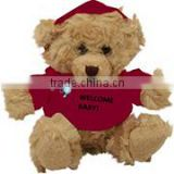 embroidery imprinted promotional logo red T-shirt teddy bear dress scarf beanbag bandana t-shirt bib tie ribbon animal toys