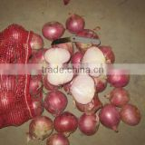 2014 new fresh red onion for sale