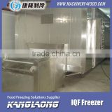 Large Output Freezing Plant With Good Quality