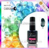 Caixuan Hot Sale! 2015 fancy colors cat eyes gel nail polish,magnetic uv gel