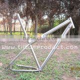 Titanium 29er Frame Integrated Seatpost/Hidden Cable Routing/Rohloff Sliding Dropouts