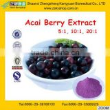 GMP Manufacturer supply good quality Slim --keeping Acai Berry Extract Euterpe Badiocarpa Extract