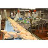 Best Quality Halal Frozen Whole Chicken good prices for export