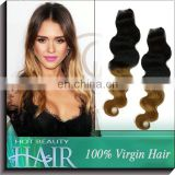 Two Tone Hair 100% Ombre Brazilian Virgin Hair Straight Blonde