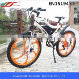 Hot sale cheap 250w electric bike with generator