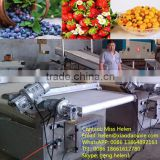 High efficiency blueberry sorting machine, blueberry processing line, blueberry grading and packing line