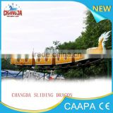 mini roller coaster dragon train ! Mini Roller Coaster Slide Dragon Train Set Amusement Electric Train