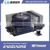 3000Kg/H Food Processing Blast Freezer Made In China