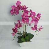 Indoor decor artificial latex flowers orchids with wholesale price