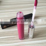 High Quality Waterproof Lip gloss Full-coverage Matte Lip Stick Long-lasting Lip Gloss Factory OEM/ODM Acceptable Wholesale
