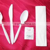 Supply Eco-Friendly Restaurant Hotel Cutlery,Disposable Cutlery
