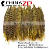 CHINAZP Factory Wholesale Good Quality and Packaging 25-30cm Dyed Yellow Ringneck Pheasant Tail Feathers