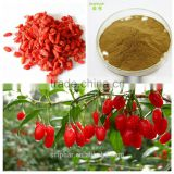 Natural Organic Wolfberry Extract Goji berry Extract HALAL KOSHER Certificates Sex inprovement