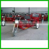 1000w Foldable Tricycle for Passenger or Cargo