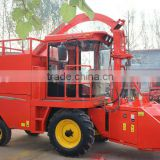 Working multi rows silage harvester machine with upright chaff cutter