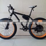 Fat Wheel E-bike! 48V 1000W Fat Wheel Electric Bike with 48V lithium Battery