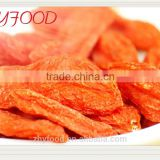 Organic Dried Fruit Dried Goji Berry certificated health food pesticide free Ninsxia Origin
