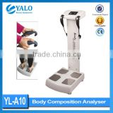 CE Aprroved Human Body Composition Analyzer for Medical salon use