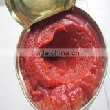 800g Good Concentrate Canned Tomato Paste Factory