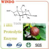 China Supplied Wholesale Dried Fine Plant Extract Enzyme Powder/Plant proteolytic enzyme