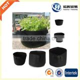 wholesale Eco-friendly planter grow bag/seeding bag grow bag plant bag/fabric tree planting bags