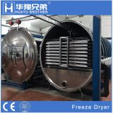 FD-20R 200kgs fruit food vegetables meals vacuum freeze dryer