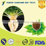 Well-being and low pesticide Maca Root Extract Powder for pharmaceuticals