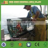 Cheap Green Coated Net Trap for Crabs, Crab Pots