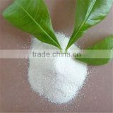 Mono Ammonium Phosphate Fertilizer MAP Water soluable to available P205 90%MIN powder white