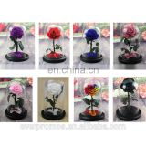 Preserved Real Flowers Natural Fresh Glass Dome Wooden Base Glass Cover for Rose
