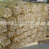 Bamboo Stick at Cheap Price