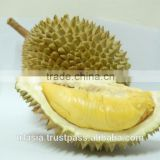 Fresh Musang King Durian
