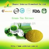 Free sample 2015 China Supplier Wholesale 100% Pure Tea Polyphenol/ Organic green tea extract