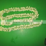 Inquiry about Fresh Jasmine Flower Exporter for / Importers in Malaysia / Singapore / Dubai / Canada / USA/ Uk / France / Germany