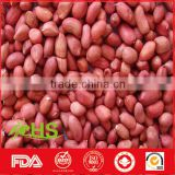 Red skin raw peanut for sale from China