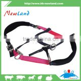 horse halter premium 2-color soft