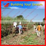 AMISY Exported to Brazil low price of mini sugarcane harvester/mini sugar cane harvest machine/sugar cane harvesting machine