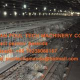 Selling Poultry Farming Equipment Broiler Cage & Broiler Coop & Meat Chicken Cage in Chicken Shed in Russia